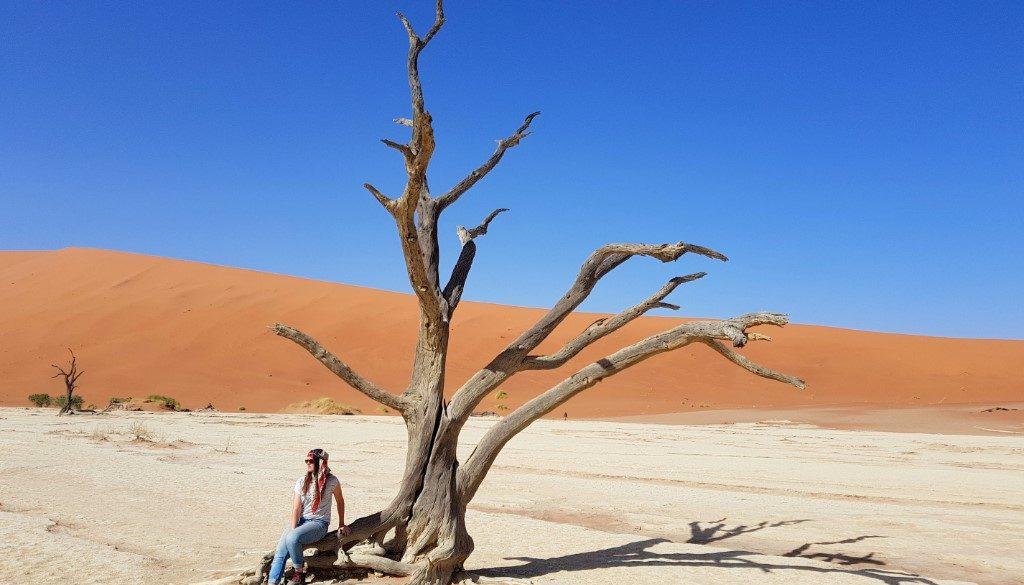 De 5 hoogtepunten van Namibië