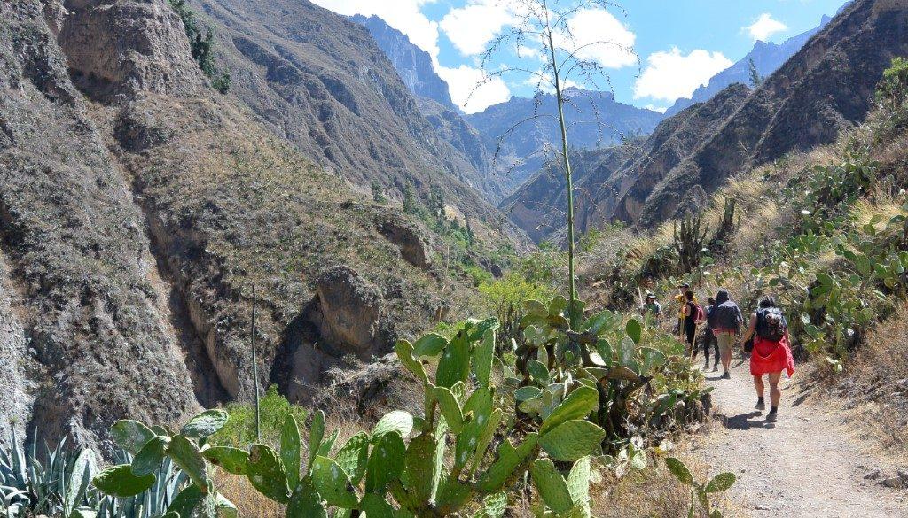 'Arequipa en de Colca Canyon'
