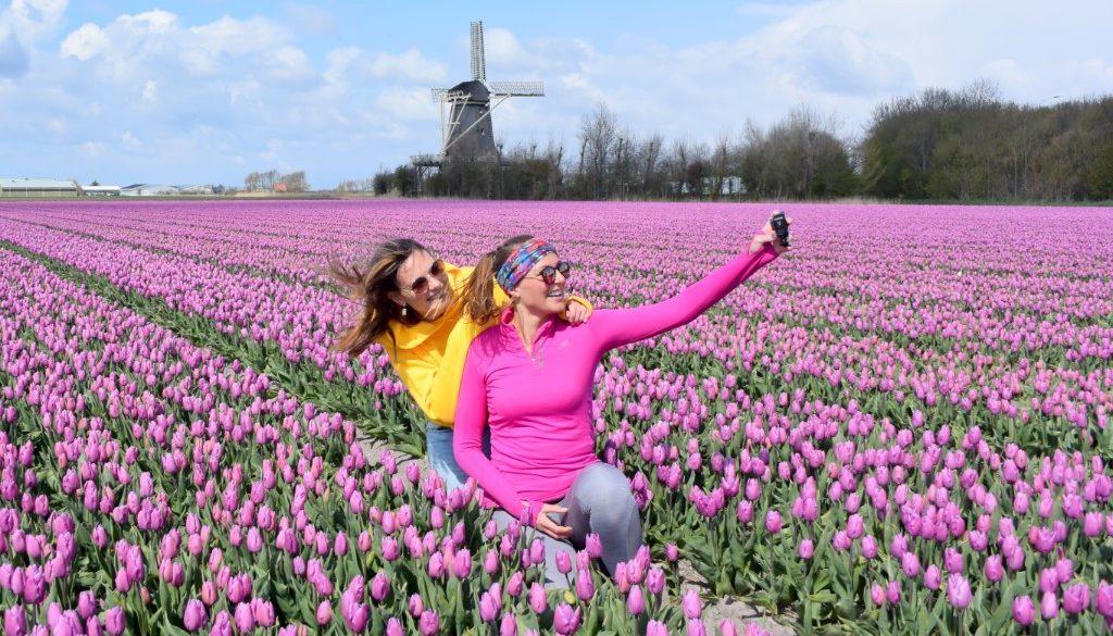 Reisvideo Tulpen in Noord Holland