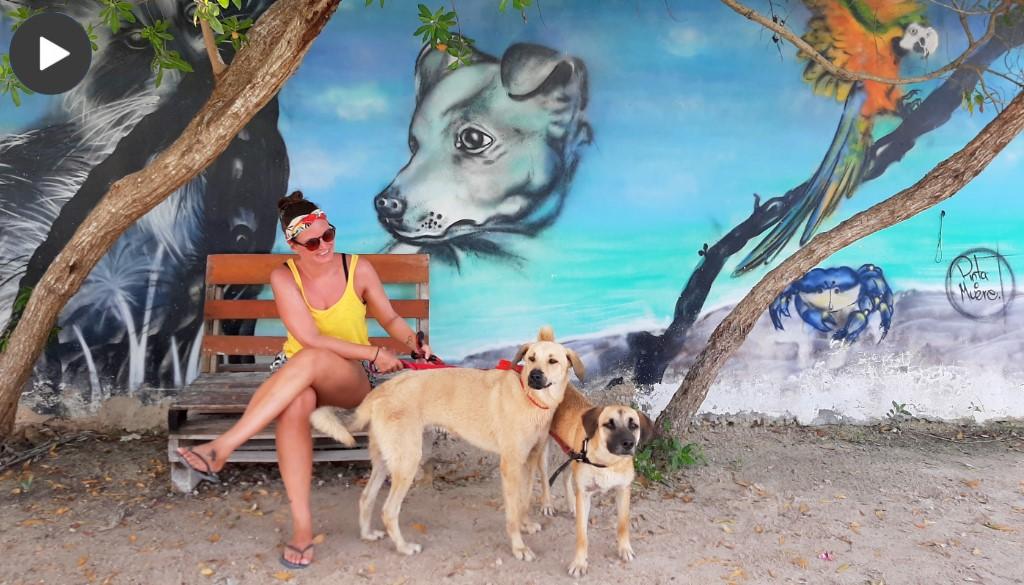 Reisvideo Isla Holbox